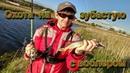 Ловля щуки на воблеры. Рыбалка на реке. Ловля щуки на спиннинг
