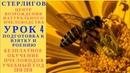 МОСКВА ГЕРМАН СТЕРЛИГОВ МЕД БЕЗПЛАТНОЕ ОБУЧЕНИЕ ПЧЕЛОВОДСТВУ УРОК 4 ПОДГОТОВКА К ВЗЯТКУ И РОЕНИЕ