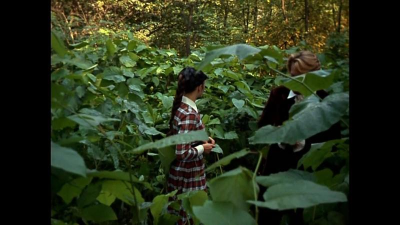 «Дворянское гнездо» (1969) - мелодрама, реж. Андрей Кончаловский