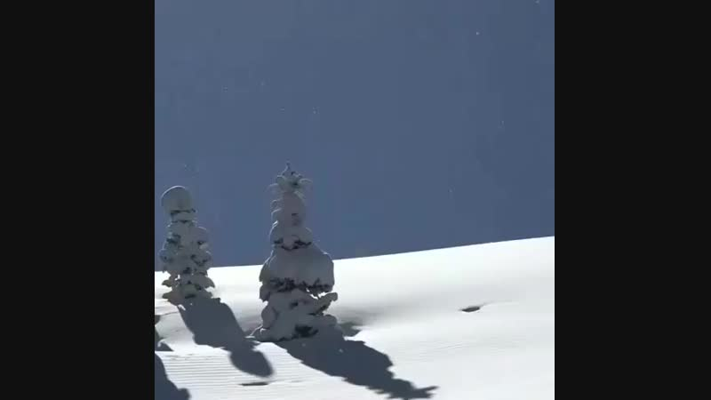 Snowmobile.daily.gram_BqpXseCgu_4.mp4