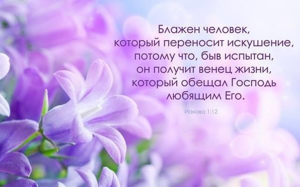 http://cs412118.vk.me/v412118796/2528/QqfEWRsDUUo.jpg