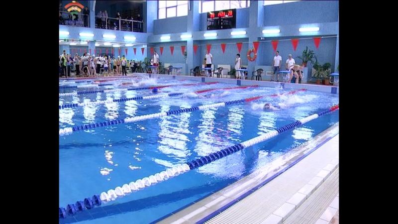 Первенство Ленинградской области по плаванию состоялось в бассейне Лазурный г.Тосно