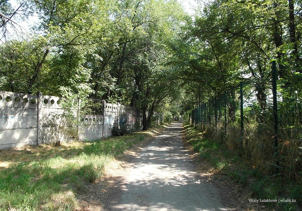Между заборов, Ботанический сад Алматы 2018
