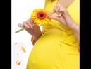 Как родить здорового ребенка на продукции Fohow Здоровье с ЦСТО Жемчужина Востока.