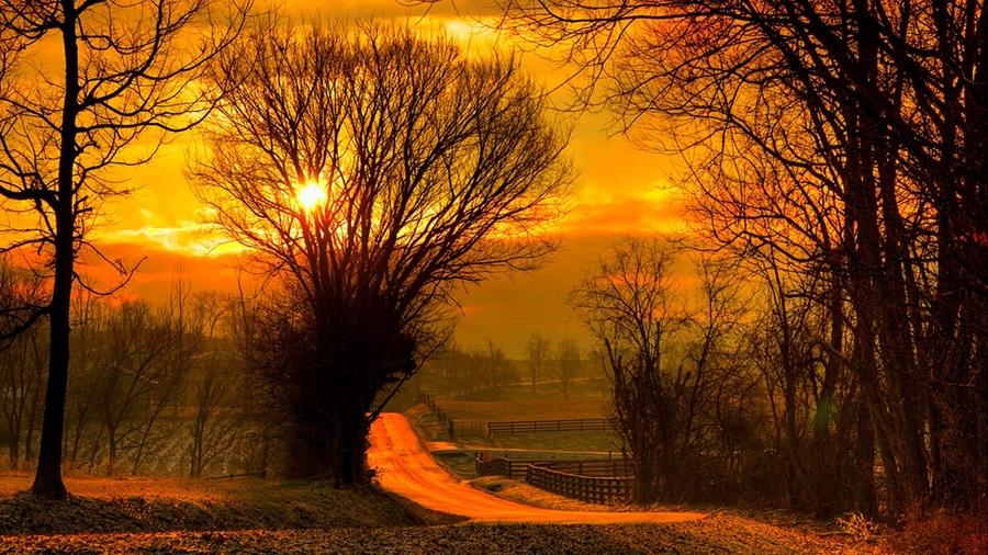 Стихи про осень короткие и красивые: классиков и современных авторов