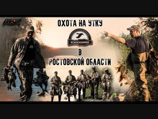 Охота на утку в Ростовской области