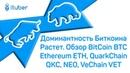 Доминантность Биткоина Растет. Обзор BitCoin BTC, Ethereum ETH, QuarkChain QKC, NEO, VeChain VET.