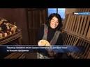 Перуанцы готовят на свадьбы деликатес из куев