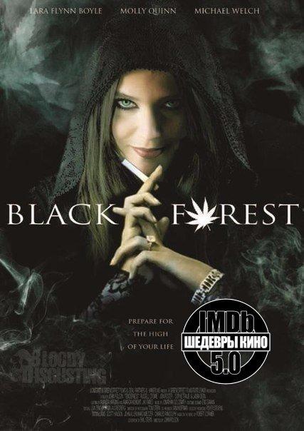 Черный лес (2012)