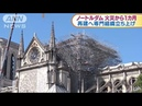 大聖堂火災から1カ月 性急な再建計画に不安の声も(19/05/16)
