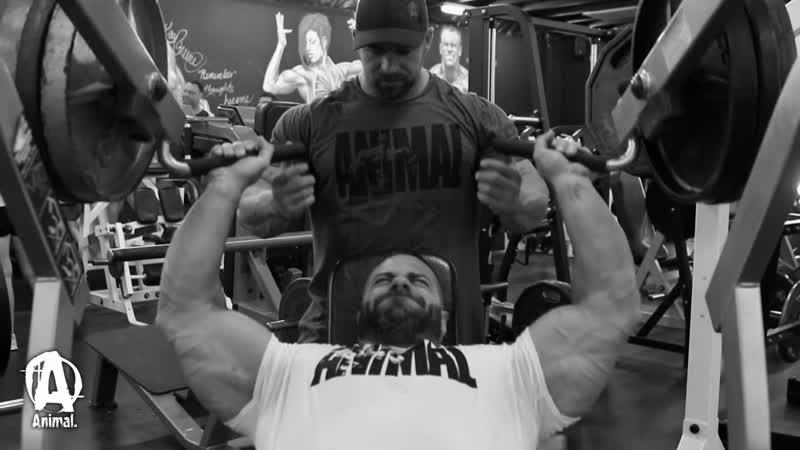 Evan Centopani - Split Workout