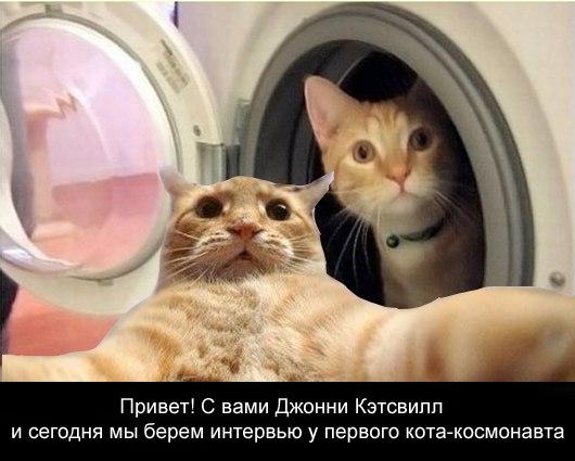 http://cs424427.vk.me/v424427815/8b69/LUCJtBe3Zks.jpg