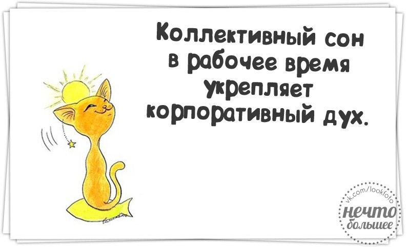 http://cs614630.vk.me/v614630400/41d6/OufHlnHcz1U.jpg