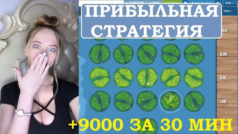 Поиграла в игру 🍀 «SWAMP LAND» и сняла 9000 рублей. Прибыльная стратегия на SWAMP LAND в 1xbet