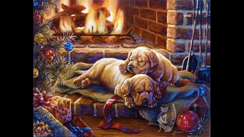 Желаю всем богатства и достатка,Чтоб беды обходили стороной!Чтоб жизнь была безоблачной сладкой,А в доме были счастье и покой!