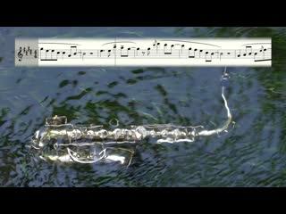 Nora En Pure – Saltwater (Фонограмма и ноты для саксофона альт, тенор, флейты и гитары)