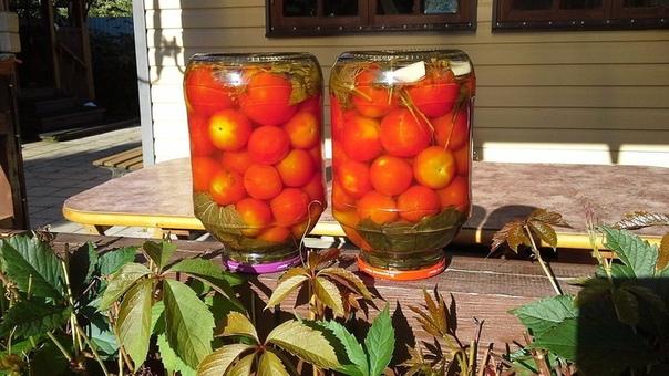 помидоры волшебные, за рассолом-очередь! для маринада: полностью...
