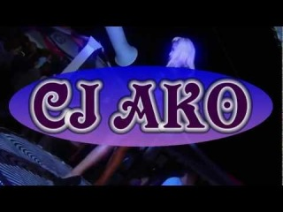 CJ AKO - Eurodance Megamix 2014 Hits Dance 90 Remix Евродэнс 90s House Ibiza Party Music