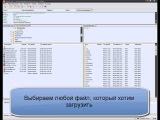 Как пользоваться FileZilla в uCoz