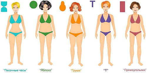 Формы тела девушек