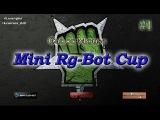 CoM: Mini Rg-Bot Cup #1 финал