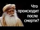 Садгуру Что происходит после смерти Джагги Васудев