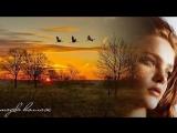 музыка Сергея Зиновьева,стихи Владимира Вялкина. Птицы к югу собираются.