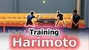 Wonderkid Harimoto I Training Table Tennis I Czech Open 2018 I Wonderkid Harimotoトレーニング卓球チェコオープン2018