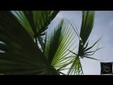 Dua Lipa - Hotter Than Hell (DJ Zhuk remix) ALIMUSIC VIDEO