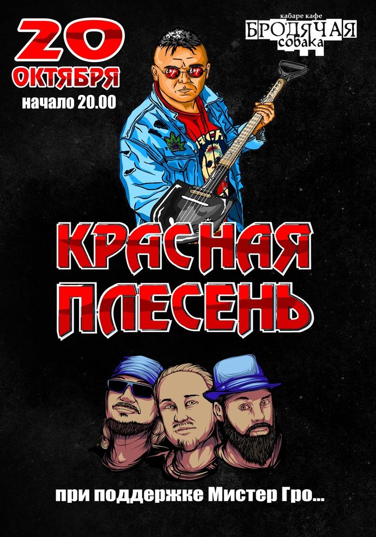 Афиша Новосибирск Красная Плесень / 20 октября / Новосибирск