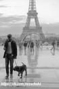 Собаке редко удавалось привить человеку своё благоразумие; зато человеку распустить собаку…