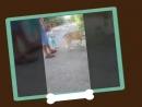Video_20180815151519972_by_imovie.mp4