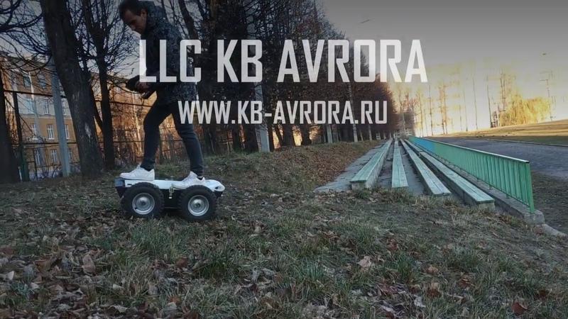 KB Avrora. Platform testing. Wombat robot