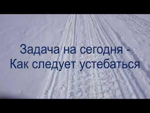 2019 02 10 Лыжная прогулка п. Дзержинский - г. Лысая - ур. Покровка - п. Дзержинский