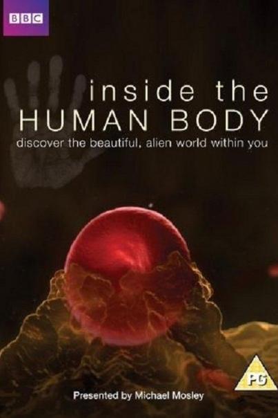 «Внутри человеческого тела» (2011) Документальный мини-сериал BBC.Всё изучить невозможно, мир огромный и изведан лишь наполовину, что заставляет ученых и изобретателей с необходимостью двигаться