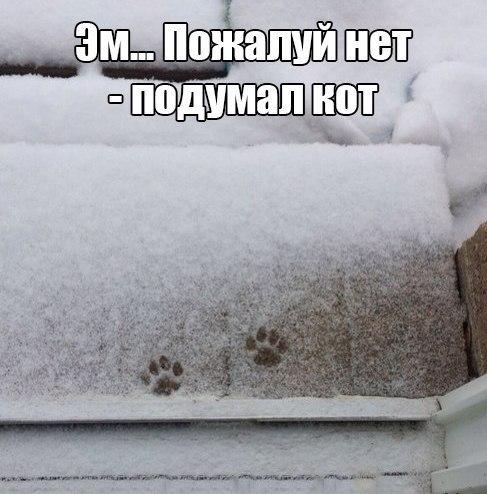 Юрий Янив  