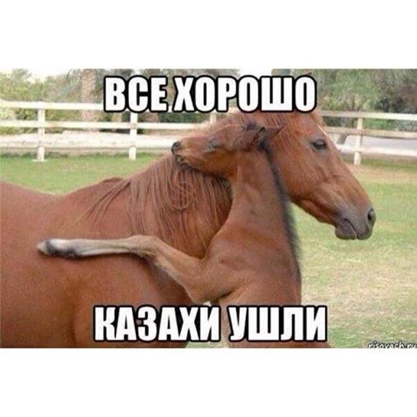 Казахски картинки приколы, своими