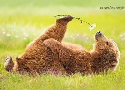 Счастье в умении радоваться простым вещам!)