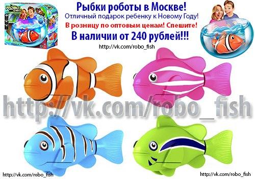 где купить в москве fish hungry