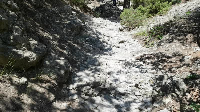 Тропа Галицына-подьем2, 20180628_131602.mp4