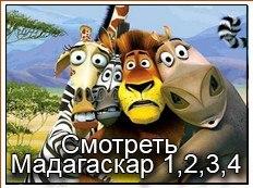 Мадагаскар - смотреть онлайн бесплатно в хорошем качестве