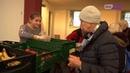Пенсии для людей без стажа в Германии? В стране обсуждают введение «базовой пенсии».