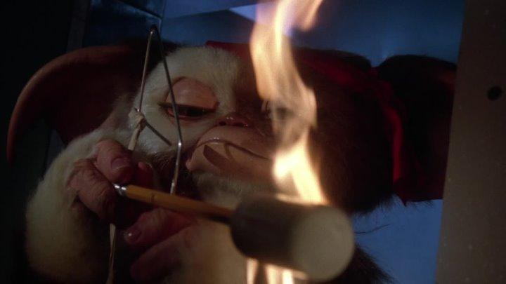 Гремлины 2: Новенькая партия / Gremlins 2: The New Batch (1990)