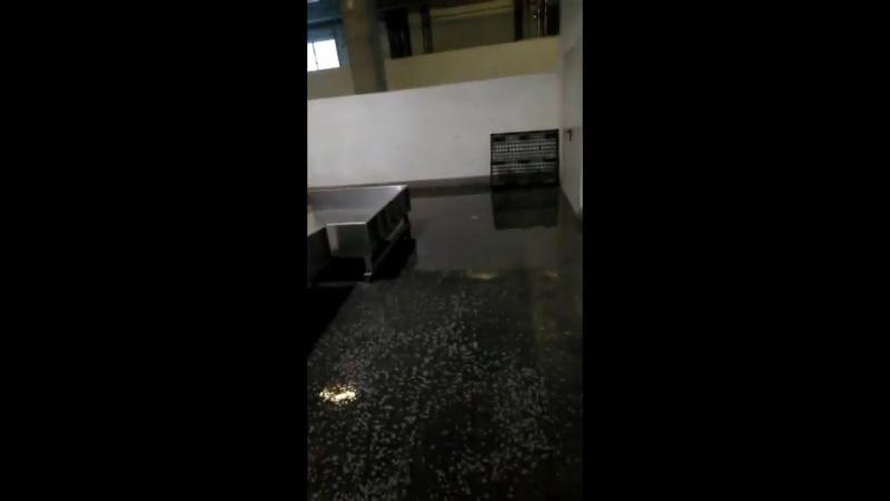 В Калининграде затопило багажное отделение Храброво