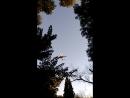 В Южном Парке Адлера