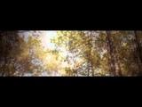 Arthur H - Album