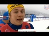 Норвежский Лыжник. Похож на русского Емелю...