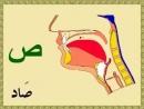 Как правильно произносить буквы арабского языка