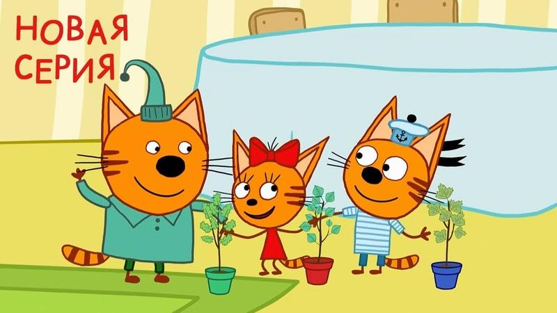 Три кота Деревья Новая Серия 123 Мультфильмы для детей