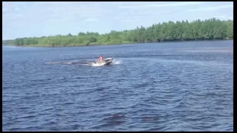 Тест-драйв лодки Quintrex 350 Dart с мотором Mercury 9,9